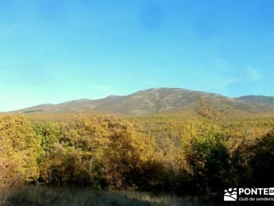Riaza - Robledal de Hontanares; single madrid parque natural de redes esquiar alto campoo